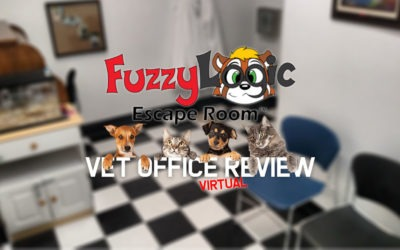 Fuzzy Logic Vet Office Virtual Escape Room Review